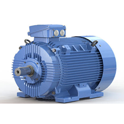 MARATHON Induction Motor