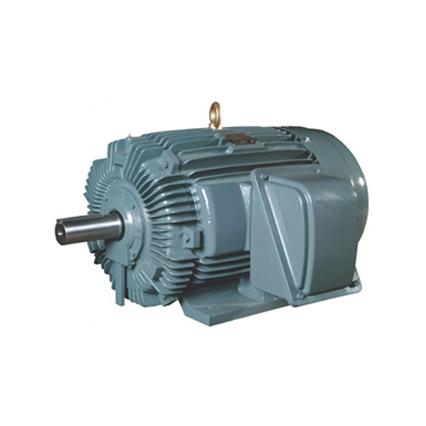 TECO Induction Motor