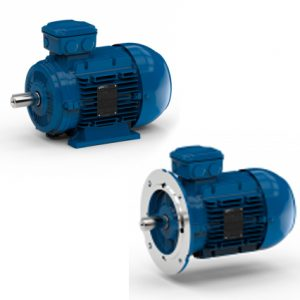WATT Drive EUSAS Induction Motor
