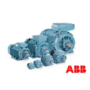 ABB Induction Motor