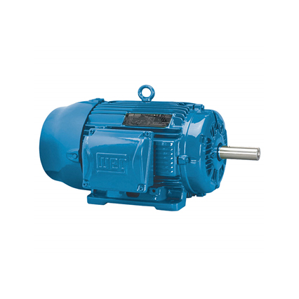 WEG Induction Motor